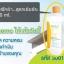 Concentrate Liquid Detergent ผลิตภัณฑ์ซักผ้าสูตรเข้มข้น ผลิตภัณฑ์ Successmore thumbnail 4